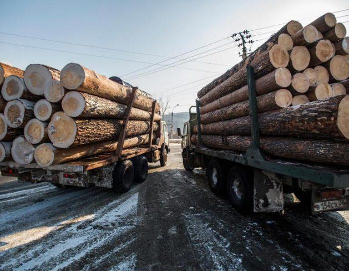 Традиційний лісової договір: оцінка місця роботи